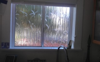 Bamboo Privacy Glass